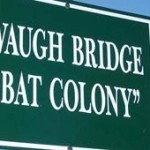 Bat Colony Sign